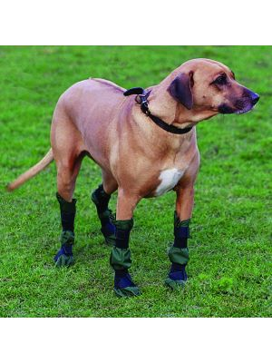 Dog Show (Benching) Boots