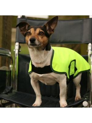 Hi Vis Tabard - Waterproof Dog Coat